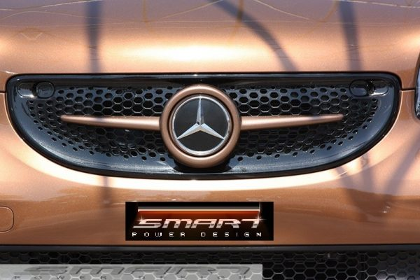 Front grille SLS in autumn brown metallic with original mercedes emblem for Smart 453