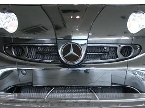 Front Grille F1 jack black Smart Fortwo 450